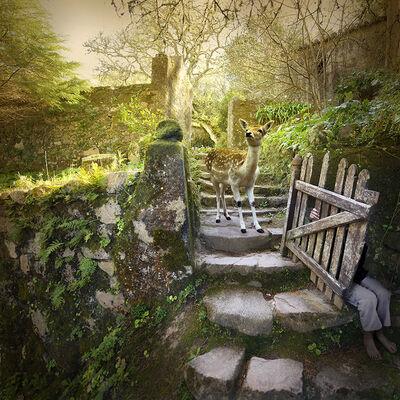 Tom Chambers, 'Garden Gate', 2017