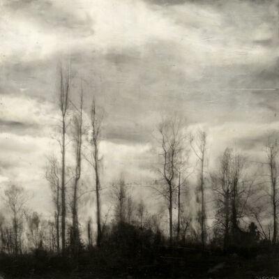 Brett Deschene, 'Tree Song', 2012