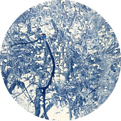 Danie Mellor, 'Ecology IV', 2015