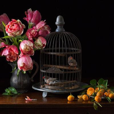 Paulette Tavormina, 'Zebra Finches and Tulips', 2017