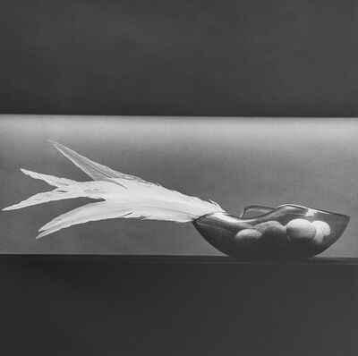 Robert Mapplethorpe, 'Feathers and Eggs', 1985