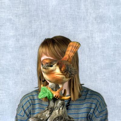 Helen Sear, 'Sightlines, Untitled 7', 2011