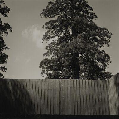 Keiichi Ito, 'Ise', 2009
