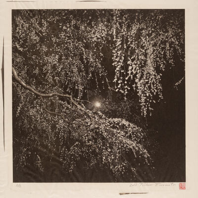 Toshio Enomoto, 'A Tree in Full Bloom under the Moon at Kyoto Imperial Palace', 2013