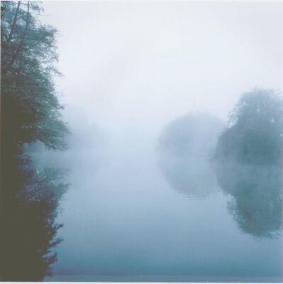 Robert Davies, 'Landscape/River Series: February 4', 2009