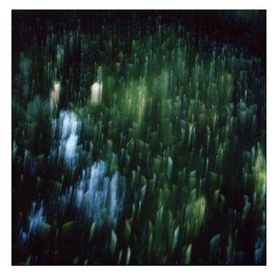 Cristina Fontsare, 'Highlights', 2014