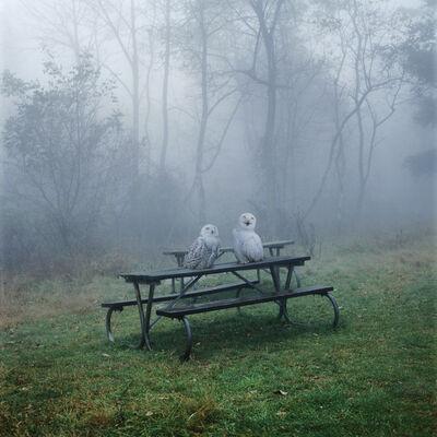 Simen Johan, 'Untitled #132', 2005