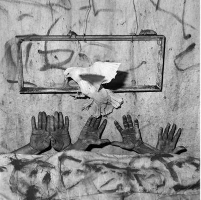 Roger Ballen, ' Five Hands', 2006