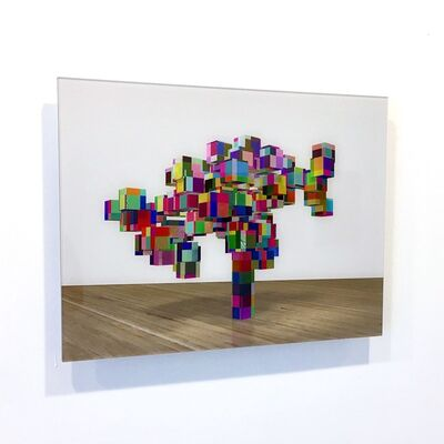 George Blaha, 'And They Call That a Tree (bonsai)', 2013