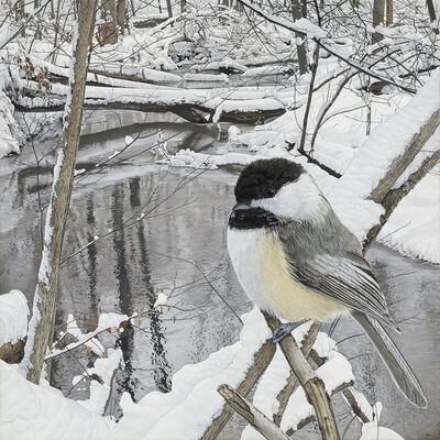 Rick Pas, 'Chickadee at Hasler Creek', 2019