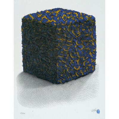 César, 'Portrait de compression de drapeaux Suédois ', 1998