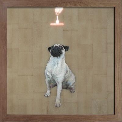 Island 6, 'Same Old Trick (Dog)', 2013