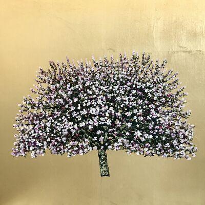 Jack Frame, 'Countess Gold Apple Blossom', 2019