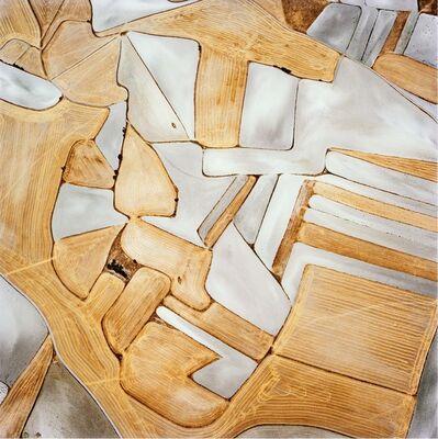 David Maisel, 'The Fall (Borox 2)', 2013