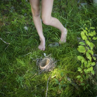 Cig Harvey, 'The Bird's Nest, Syd, Lincolnville, Maine', 2013