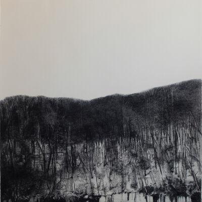 Irene González, 'Paisajes en espera', 2014
