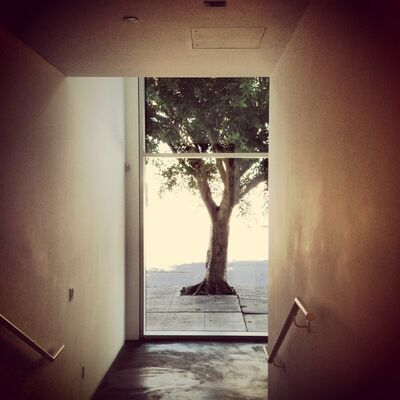 Alessandra Capodacqua, 'Anatomy of Solitude #', 2013