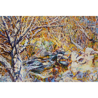 Patricia Tobacco Forrester, 'Eye On Rock Creek', Executed in 2004.