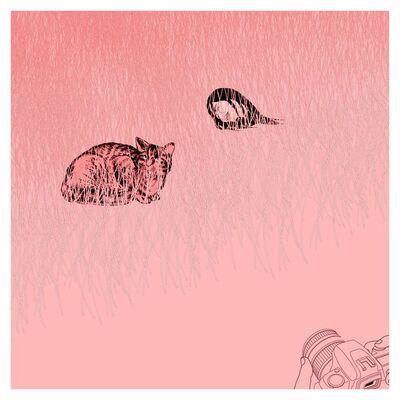 Hsu Che-Yu, 'Smile of Cheshire cat', 2015