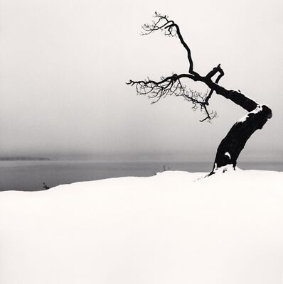 Michael Kenna, 'Kussharo Lake Tree, Study 5, Kotan, Hokkaido, Japan', 2007