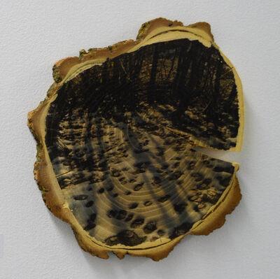 Laura Pierson, 'The Path Already Taken', 2015