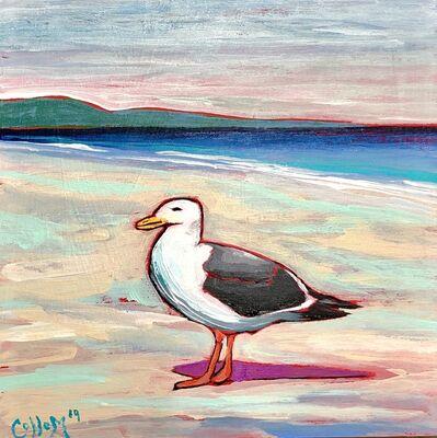 Tim Collom, 'Seagull', 2019
