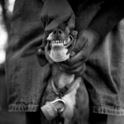 Brandon Thibodeaux, 'Alex's New Dog, Duncan,Mississippi', 2011
