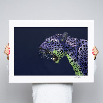 Helmut Koller, 'PURPLE LEOPARD ON DARK BLUE', 2015