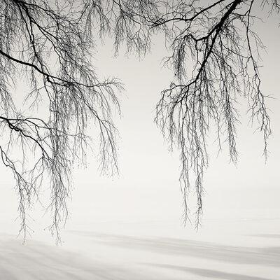 Josef Hoflehner, 'Russian Winter, Study 5, Russia', 2010