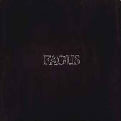 Alighiero Boetti, 'Fagus', 1967