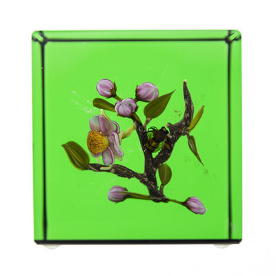 Paul Stankard, 'Glass Paperweight Fine Art Green Apple Blossom w/honey Bee. Signed', 1994