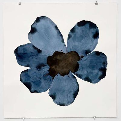 Stephen Doherty, 'Large Blue Flower', 2017