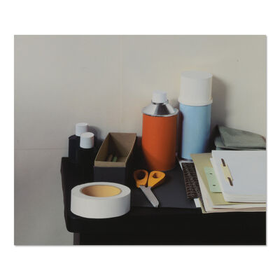 Thomas Demand, 'Phototrophy', 2005