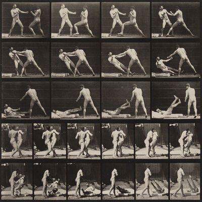 Eadweard Muybridge, 'Animal Locomotion, Plate 333', 1887