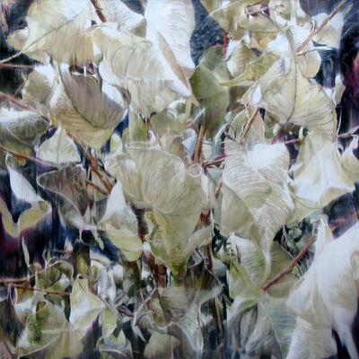 Yoon Suk One, 'Dry Plant-18023', 2018
