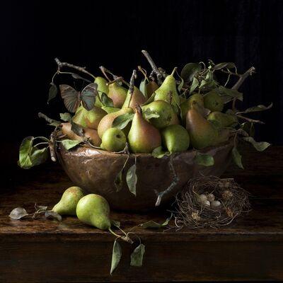 Paulette Tavormina, 'Orchard Pears', 2016