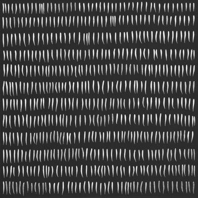 Sophia Dixon Dillo, 'Untitled (2648)', 2019