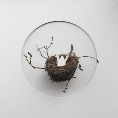 María Ángeles Atauri, 'Bubble. House in a nest', 2021