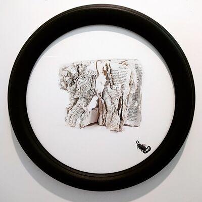 Alessandro Giampaoli, 'Fluctuat nec mergitur', 2018