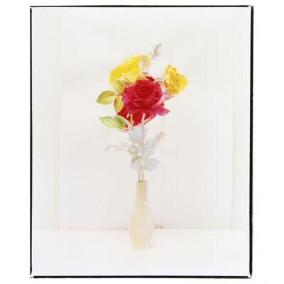 Clarrisse D'Arcimoles, 'Tinted Flowers 08', 2020