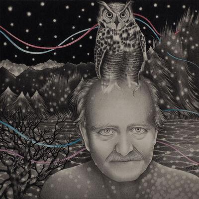 Alessia Iannetti, 'V. and the Owl', 2015
