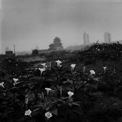 Tian Ye, 'Kaifeng', 2000