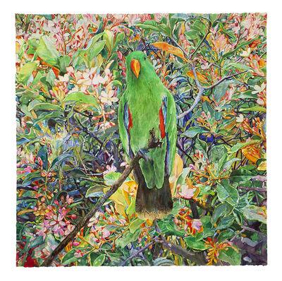 Joseph Raffael, 'Parrot Moving Toward the Light', 2020