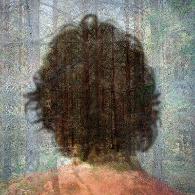 Helen Sear, 'Inside The View, No. 15', 2006