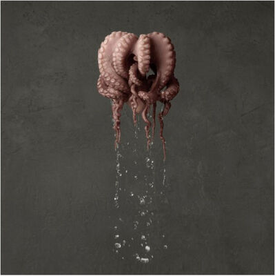 Marie Cecile Thijs, 'Octopus', 2014