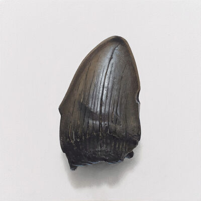 Benjamin M Johnson, 'Fossilized Tooth', 2020
