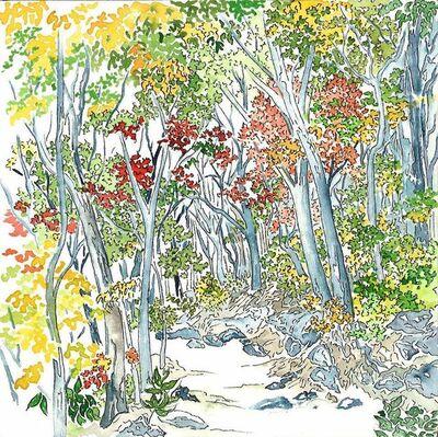 Scott Winterrowd, 'Chisos in Autumn, Big Bend National Park', 2014
