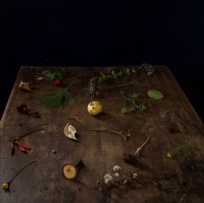 Cig Harvey, 'The Fall Table'