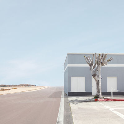 Lauren Marsolier, 'Building and Tree', 2010