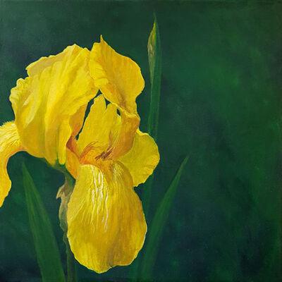 """Kate Shaffer, '""""Yellow Iris""""', 2021"""
